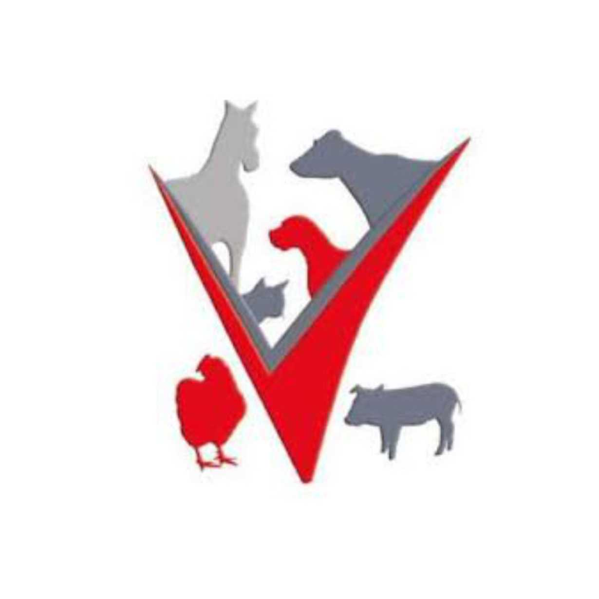 clinique veterinaire corlay